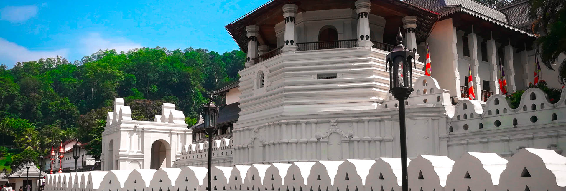 Day Tour to Pinnawala and Kandy | Rent a Tour Guide in Sri Lanka