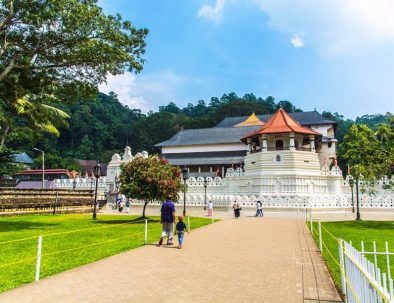 Pinnawala and Kandy City Tour
