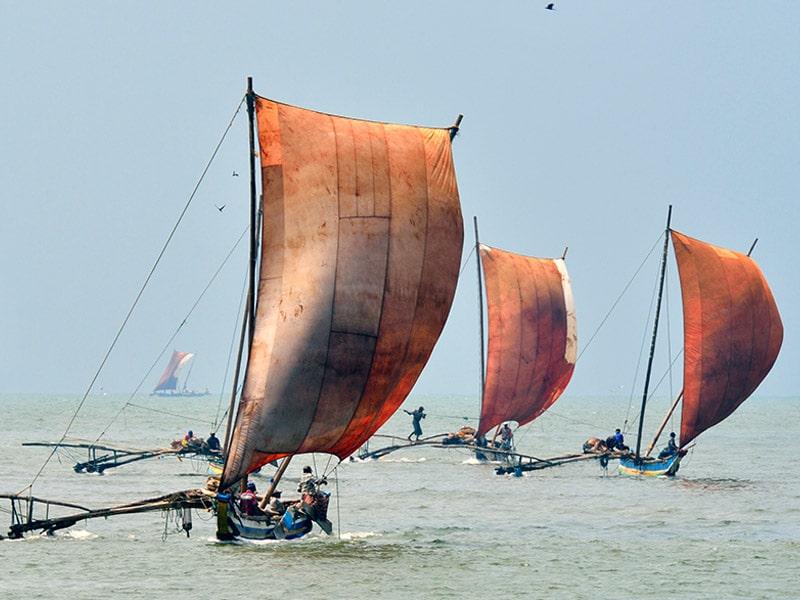 Sailing boat negombo