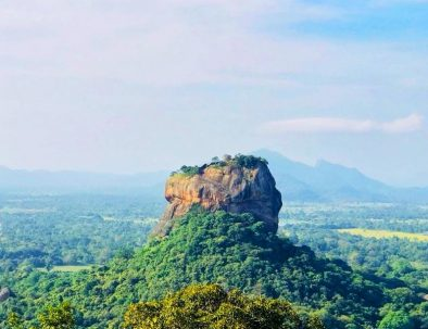 Sigiriya and Dambulla Private Tour